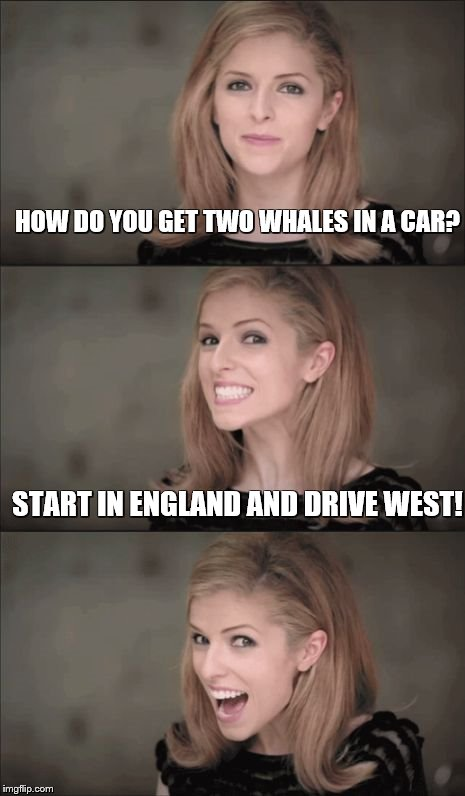 Bad Pun Anna Kendrick Meme | HOW DO YOU GET TWO WHALES IN A CAR? START IN ENGLAND AND DRIVE WEST! | image tagged in memes,bad pun anna kendrick | made w/ Imgflip meme maker
