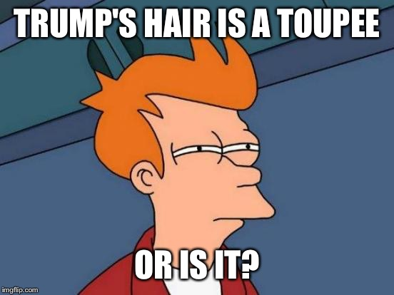 Futurama Fry | TRUMP'S HAIR IS A TOUPEE OR IS IT? | image tagged in memes,futurama fry | made w/ Imgflip meme maker