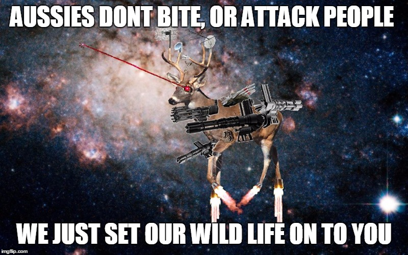 space deer death eye lazers | AUSSIES DONT BITE, OR ATTACK PEOPLE WE JUST SET OUR WILD LIFE ON TO YOU | image tagged in space deer death eye lazers | made w/ Imgflip meme maker