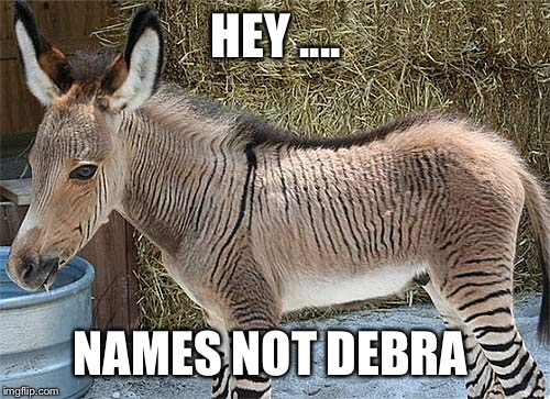 HEY .... NAMES NOT DEBRA | made w/ Imgflip meme maker