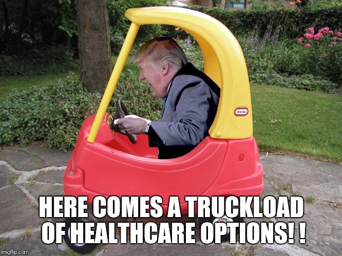 It's really a beautiful plan. So wonderful. Everyone will be covered at a tiny fraction of the cost. | HERE COMES A TRUCKLOAD OF HEALTHCARE OPTIONS! ! | image tagged in liar,trump,suckered,so true | made w/ Imgflip meme maker