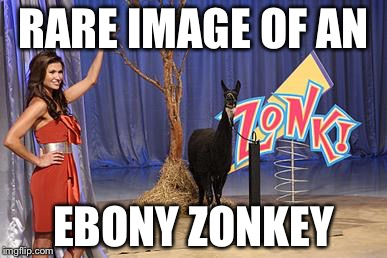 Zonk | RARE IMAGE OF AN EBONY ZONKEY | image tagged in zonk | made w/ Imgflip meme maker