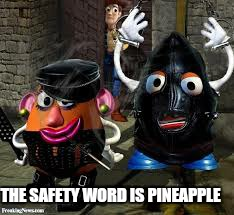 THE SAFETY WORD IS PINEAPPLE | made w/ Imgflip meme maker