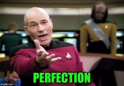 Picard Wtf Meme | PERFECTION | image tagged in memes,picard wtf | made w/ Imgflip meme maker