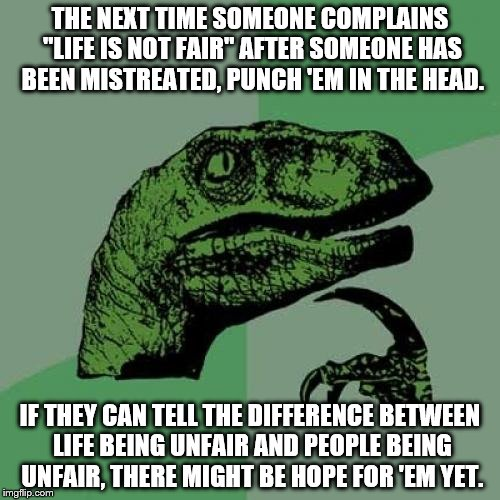 "Philosoraptor Meme | THE NEXT TIME SOMEONE COMPLAINS ""LIFE IS NOT FAIR"" AFTER SOMEONE HAS BEEN MISTREATED, PUNCH 'EM IN THE HEAD. IF THEY CAN TELL THE DIFFERENCE 