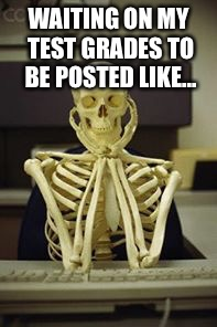 Skeleton waiting computer | WAITING ON MY TEST GRADES TO BE POSTED LIKE... | image tagged in skeleton waiting computer | made w/ Imgflip meme maker