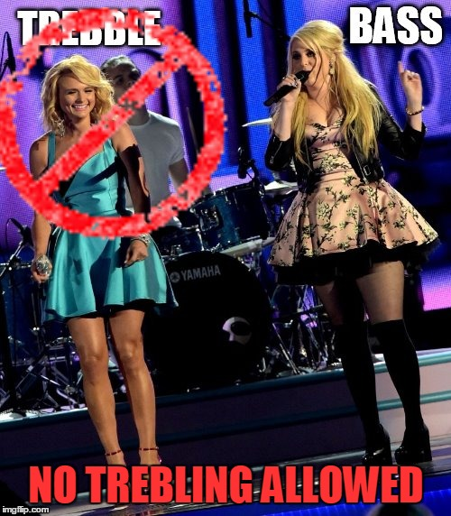 NO TREBLING ALLOWED | made w/ Imgflip meme maker