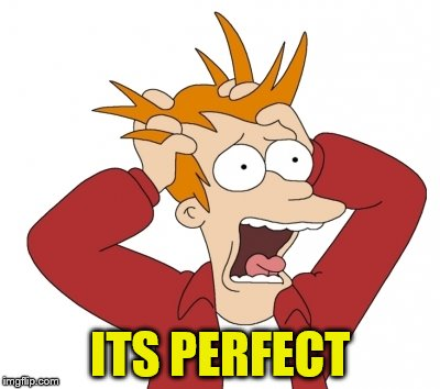 ITS PERFECT | made w/ Imgflip meme maker