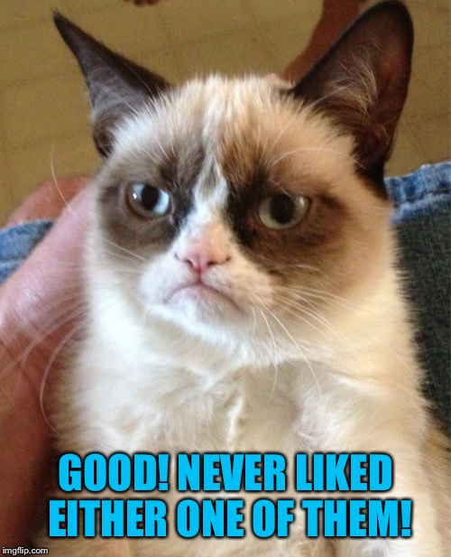 Grumpy Cat Meme | GOOD! NEVER LIKED EITHER ONE OF THEM! | image tagged in memes,grumpy cat | made w/ Imgflip meme maker