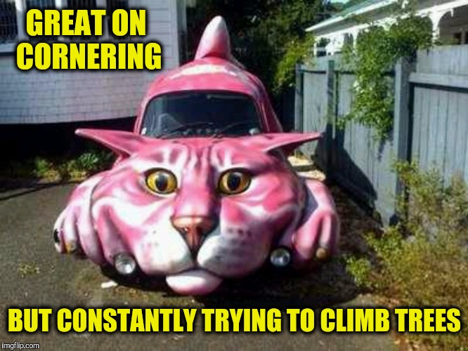 It must be Caturday | GREAT ON CORNERING BUT CONSTANTLY TRYING TO CLIMB TREES | image tagged in caturday,cat car,strange cars,cuz cars | made w/ Imgflip meme maker