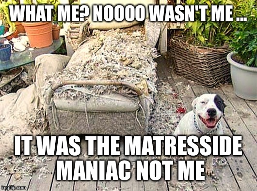 WHAT ME? NOOOO WASN'T ME ... IT WAS THE MATRESSIDE MANIAC NOT ME | made w/ Imgflip meme maker