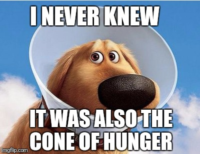 I NEVER KNEW IT WAS ALSO THE CONE OF HUNGER | made w/ Imgflip meme maker