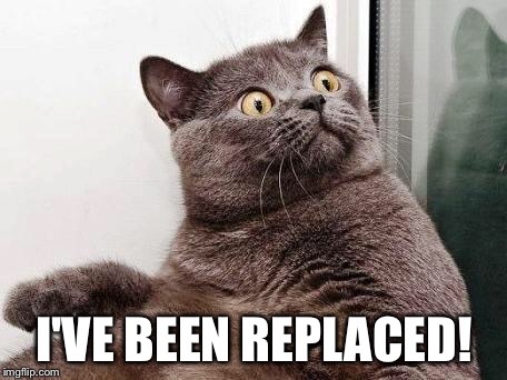 surprised cat | I'VE BEEN REPLACED! | image tagged in surprised cat | made w/ Imgflip meme maker