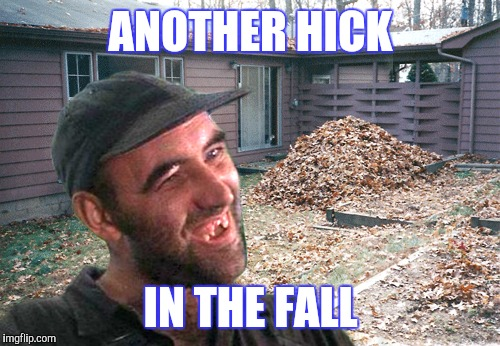 ANOTHER HICK IN THE FALL | made w/ Imgflip meme maker