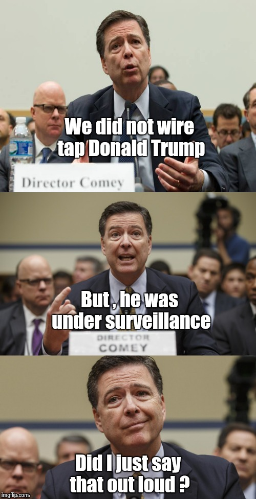 If I hear this one more time , I'm going to mess my trousers laughing ! | We did not wire tap Donald Trump Did I just say that out loud ? But , he was under surveillance | image tagged in fake news,phony,libtards | made w/ Imgflip meme maker