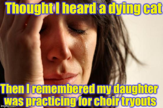 Voicing out my problems be like | Thought I heard a dying cat Then I remembered my daughter was practicing for choir tryouts | image tagged in memes,first world problems,dying,choir | made w/ Imgflip meme maker