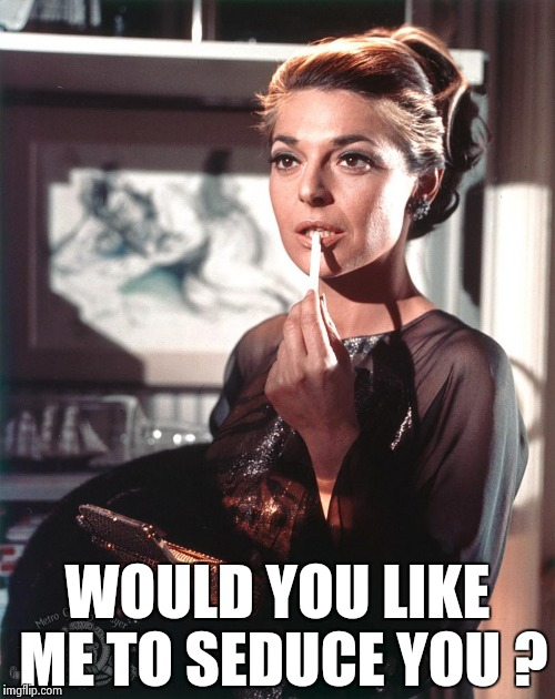 WOULD YOU LIKE ME TO SEDUCE YOU ? | image tagged in ann bancroft | made w/ Imgflip meme maker