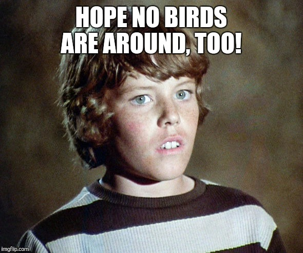 HOPE NO BIRDS ARE AROUND, TOO! | made w/ Imgflip meme maker