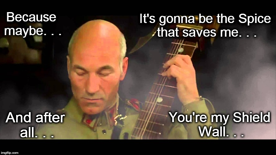 My meme's a killing word. | Because maybe. . . And after all. . . It's gonna be the Spice that saves me. . . You're my Shield Wall. . . | image tagged in memes,dune,patrick stewart,gurney,oasis,wonderwall | made w/ Imgflip meme maker