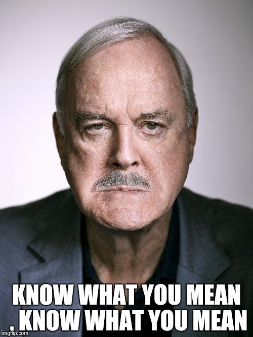 John Cleese | KNOW WHAT YOU MEAN , KNOW WHAT YOU MEAN | image tagged in john cleese | made w/ Imgflip meme maker
