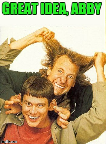 DUMB and dumber | GREAT IDEA, ABBY | image tagged in dumb and dumber | made w/ Imgflip meme maker