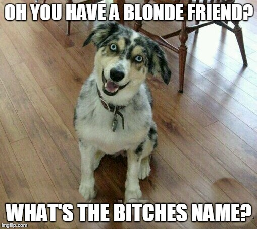 OH YOU HAVE A BLONDE FRIEND? WHAT'S THE B**CHES NAME? | made w/ Imgflip meme maker