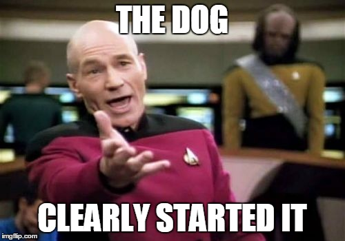 Picard Wtf Meme | THE DOG CLEARLY STARTED IT | image tagged in memes,picard wtf | made w/ Imgflip meme maker
