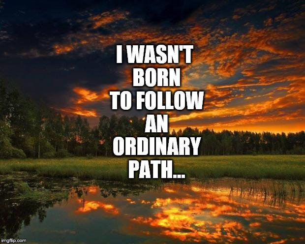 I Can't Bear to be Average |  I WASN'T BORN TO FOLLOW AN ORDINARY PATH... | image tagged in nature,follow your dreams,path,independent,unique | made w/ Imgflip meme maker
