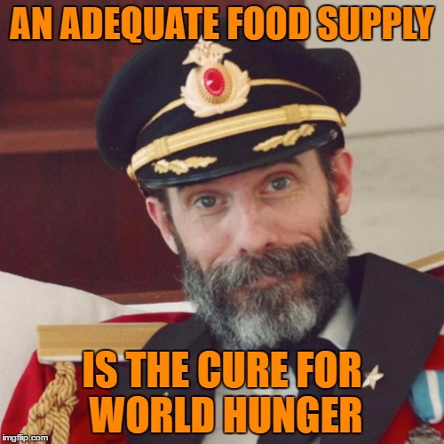 Captain Obvious | AN ADEQUATE FOOD SUPPLY IS THE CURE FOR WORLD HUNGER | image tagged in captain obvious | made w/ Imgflip meme maker