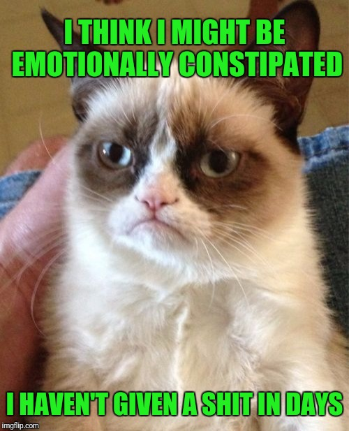 Grumpy Cat Meme | I THINK I MIGHT BE EMOTIONALLY CONSTIPATED I HAVEN'T GIVEN A SHIT IN DAYS | image tagged in memes,grumpy cat | made w/ Imgflip meme maker