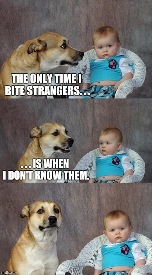 Strange strangers | THE ONLY TIME I BITE STRANGERS. . . . . . IS WHEN I DON'T KNOW THEM. | image tagged in memes,dad joke dog | made w/ Imgflip meme maker