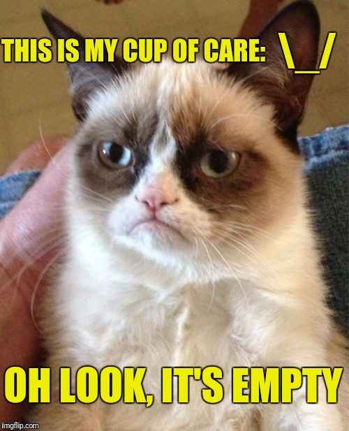 Grumpy Cat Meme | THIS IS MY CUP OF CARE: OH LOOK, IT'S EMPTY _/ | image tagged in memes,grumpy cat | made w/ Imgflip meme maker