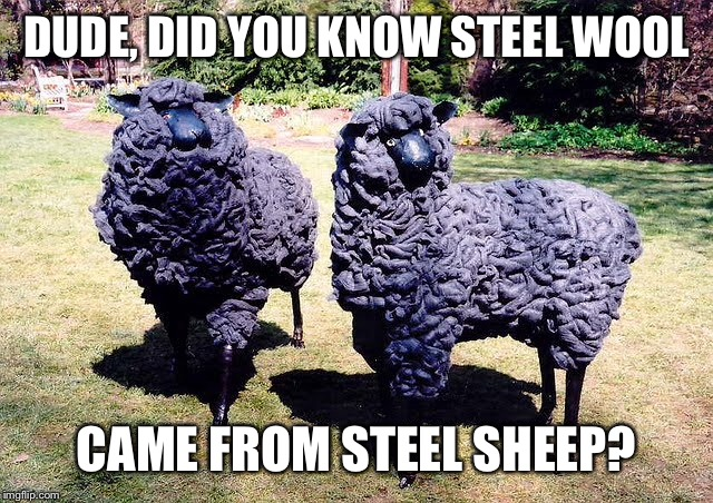 DUDE, DID YOU KNOW STEEL WOOL CAME FROM STEEL SHEEP? | made w/ Imgflip meme maker