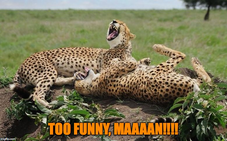TOO FUNNY, MAAAAN!!!! | made w/ Imgflip meme maker
