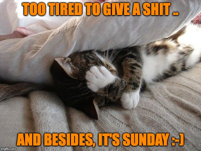 TOO TIRED TO GIVE A SHIT .. AND BESIDES, IT'S SUNDAY :-) | made w/ Imgflip meme maker