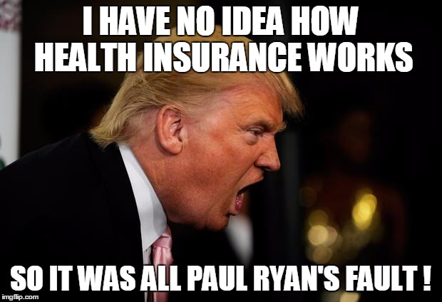 I HAVE NO IDEA HOW HEALTH INSURANCE WORKS SO IT WAS ALL PAUL RYAN'S FAULT ! | image tagged in politics,insurance | made w/ Imgflip meme maker