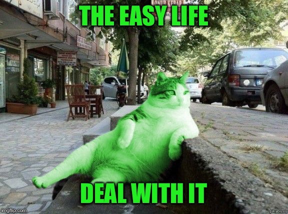 RayCat relaxing | THE EASY LIFE DEAL WITH IT | image tagged in raycat relaxing | made w/ Imgflip meme maker