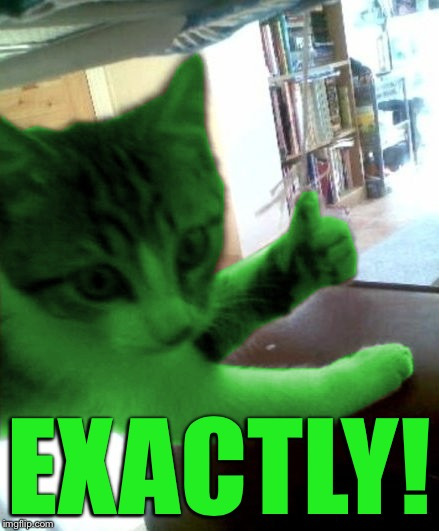 thumbs up RayCat | EXACTLY! | image tagged in thumbs up raycat | made w/ Imgflip meme maker