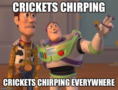 X, X Everywhere Meme | CRICKETS CHIRPING CRICKETS CHIRPING EVERYWHERE | image tagged in memes,x x everywhere | made w/ Imgflip meme maker