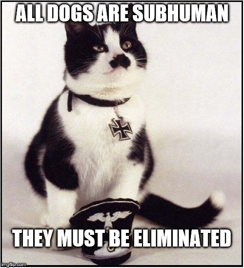 Hitler Cat | ALL DOGS ARE SUBHUMAN THEY MUST BE ELIMINATED | image tagged in hitler,memes | made w/ Imgflip meme maker
