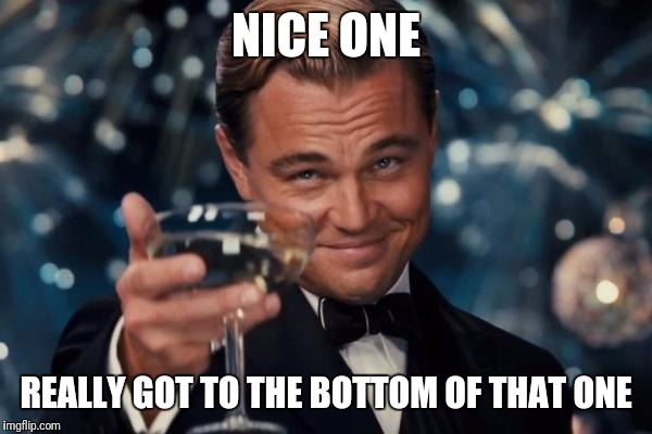 Leonardo Dicaprio Cheers Meme | NICE ONE REALLY GOT TO THE BOTTOM OF THAT ONE | image tagged in memes,leonardo dicaprio cheers | made w/ Imgflip meme maker