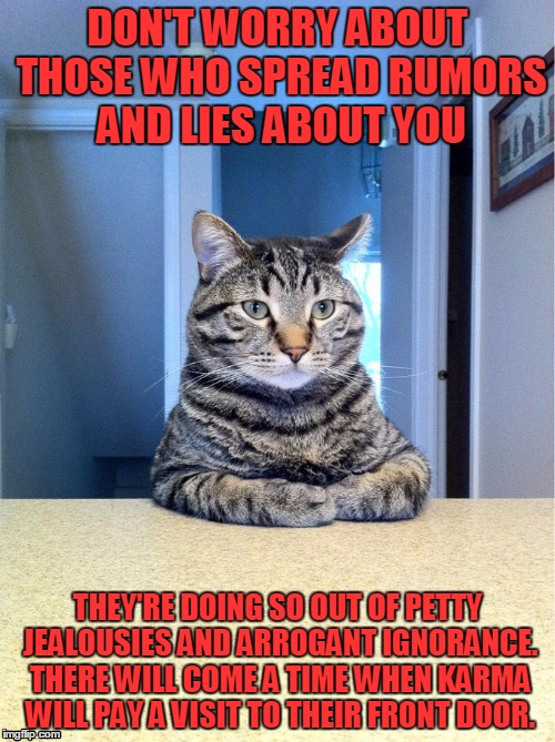 Serious Cat | DON'T WORRY ABOUT THOSE WHO SPREAD RUMORS AND LIES ABOUT YOU THEY'RE DOING SO OUT OF PETTY JEALOUSIES AND ARROGANT IGNORANCE. THERE WILL COM | image tagged in serious cat | made w/ Imgflip meme maker