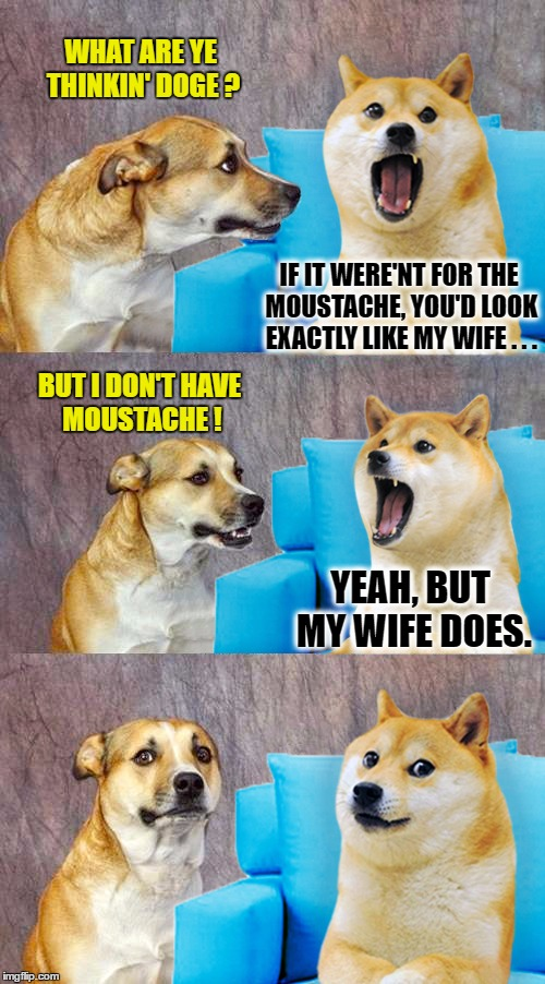 IF IT WERE'NT FOR THE MOUSTACHE, YOU'D LOOK EXACTLY LIKE MY WIFE . . . BUT I DON'T HAVE MOUSTACHE ! YEAH, BUT MY WIFE DOES. WHAT ARE YE THIN | image tagged in dad joke doge | made w/ Imgflip meme maker