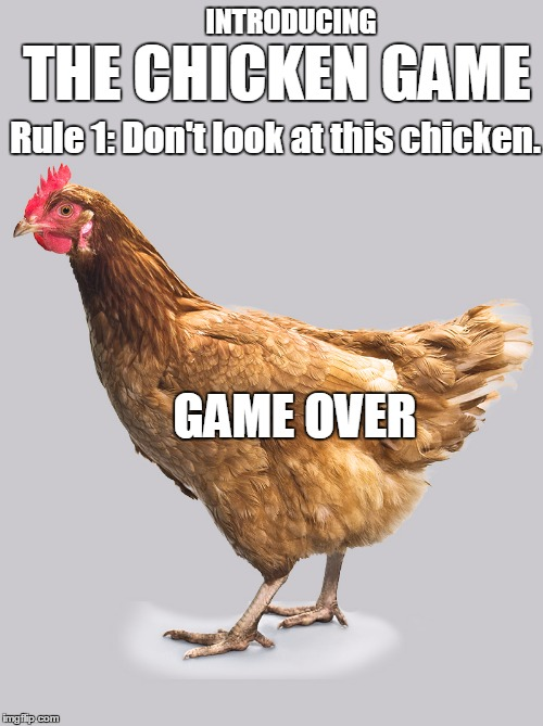 YOU LOSE |  INTRODUCING; THE CHICKEN GAME; Rule 1: Don't look at this chicken. GAME OVER | image tagged in chicken,game,memes | made w/ Imgflip meme maker