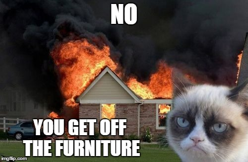 Got insurance? ;-) | NO YOU GET OFF THE FURNITURE | image tagged in memes,burn kitty,grumpy cat,furniture,your argument is invalid,last words | made w/ Imgflip meme maker