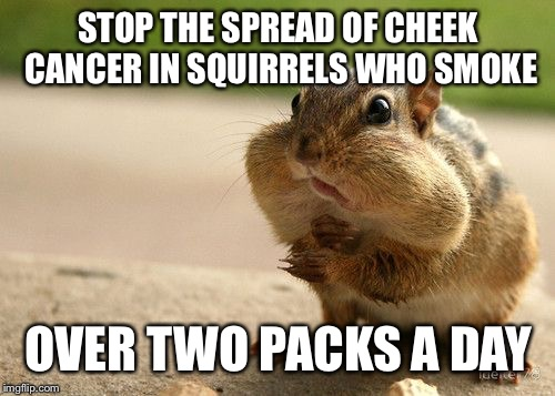 STOP THE SPREAD OF CHEEK CANCER IN SQUIRRELS WHO SMOKE OVER TWO PACKS A DAY | made w/ Imgflip meme maker