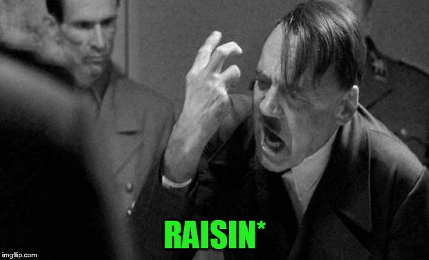 RAISIN* | made w/ Imgflip meme maker