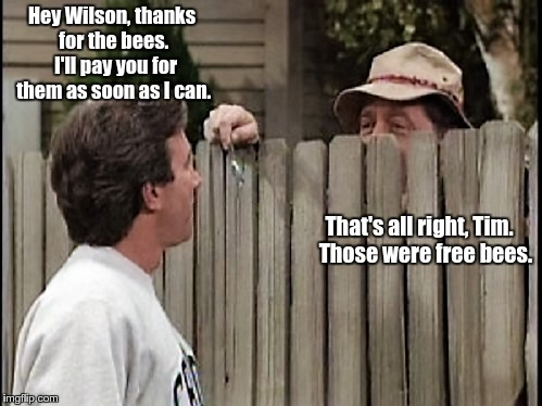 Home Improvement Tim and Wilson (actual exchange on the show) | Hey Wilson, thanks for the bees.  I'll pay you for them as soon as I can. That's all right, Tim.   Those were free bees. | image tagged in home improvement tim and wilson,bad puns,bees | made w/ Imgflip meme maker