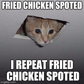 Ceiling Cat Meme | FRIED CHICKEN SPOTED I REPEAT FRIED CHICKEN SPOTED | image tagged in memes,ceiling cat | made w/ Imgflip meme maker