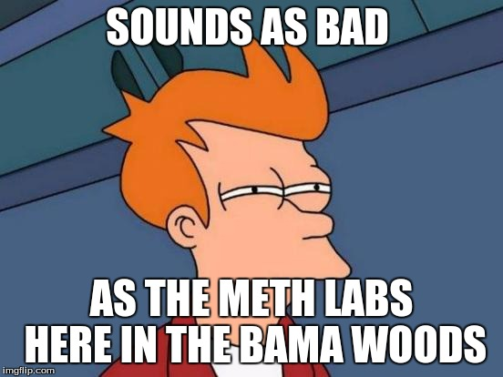 Futurama Fry Meme | SOUNDS AS BAD AS THE METH LABS HERE IN THE BAMA WOODS | image tagged in memes,futurama fry | made w/ Imgflip meme maker
